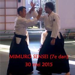 Mimuro Sensei Aikido stage 30 mei 2015