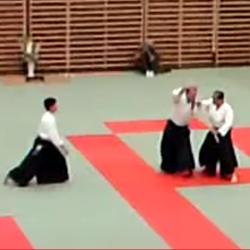 Aikido - Tada Shihan (9th dan)