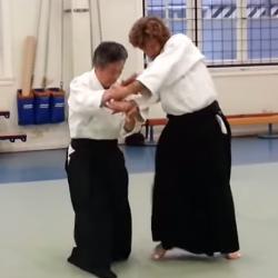 Aikido - Yamada Hironobu Shihan (8e dan)